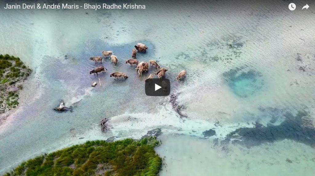 Bhajo Radhe Krishna